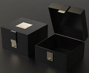 crne kutije luksuzne